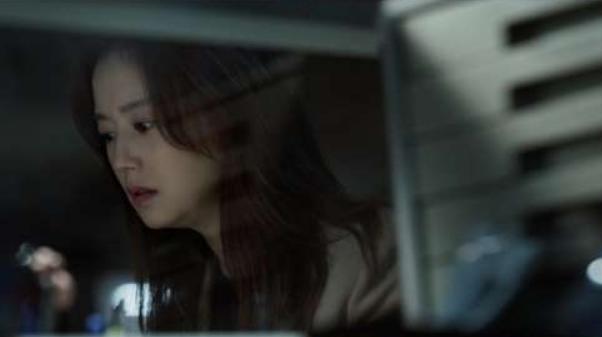 悪の華,韓国ドラマ,日本放送